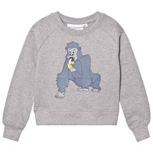 Tao&friends; Unisex Jumpers and knitwear Grey Gorillan Sweatshirt Grey
