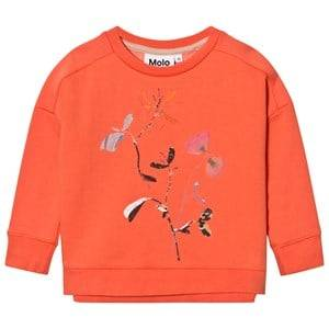 Molo Girls Jumpers and knitwear Beige Mandy Sweatshirt Living Cora