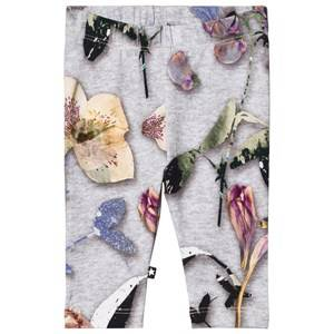 Image of Molo Girls Bottoms Grey Stefanie Leggings Paper Petals Melange