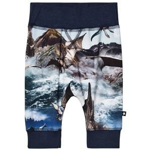 Image of Molo Boys Bottoms Blue Sammy Leggings Dragon Island
