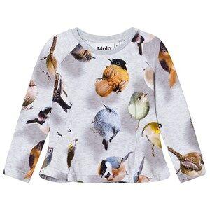 Molo Girls Tops Blue Raelicka Long Sleeve T-Shirt Bouncing Birds
