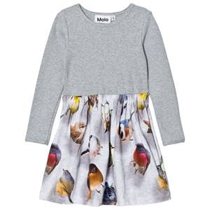 Molo Girls Dresses Blue Credence Dress Bouncing Birds