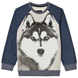 Mayoral Boys Jumpers and knitwear Navy Navy Wolf Print Raglan Sweatshirt