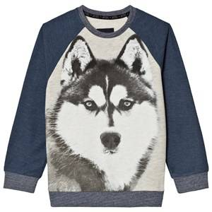 Mayoral Boys Jumpers and knitwear Navy Navy Wolf Print Raglan Sweatshirt
