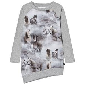 Molo Girls Dresses Grey Cindelle Dress Pony