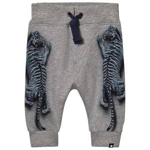 Molo Boys Bottoms Blue Solomi Soft Pants Blue Tigers