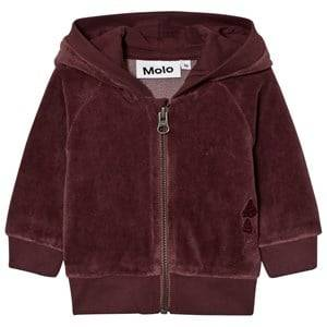 Molo Girls Jumpers and knitwear Purple Dorothy Hoodie Purple Mist