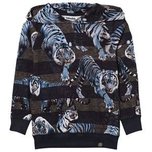 Molo Boys Jumpers and knitwear Blue Russel Hoodie Blue Tigers