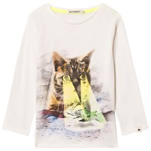Billybandit Boys Tops White White Cat and Fish Print Tee