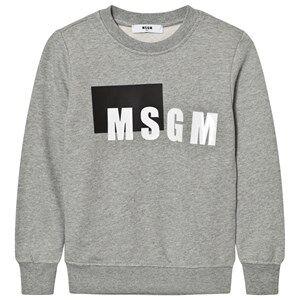 MSGM Boys Jumpers and knitwear Grey Grey Box Logo Sweatshirt