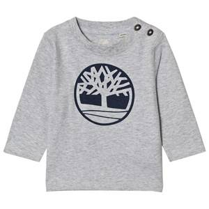 Timberland Boys Tops Grey Grey Tree Logo Tee