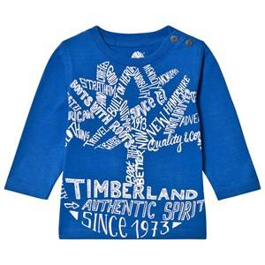 Timberland Boys Tops Blue Royal Blue Script Logo Tee