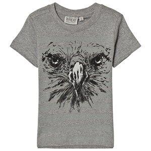 Wheat Boys Tops Grey T-Shirt Eagle Melange Grey