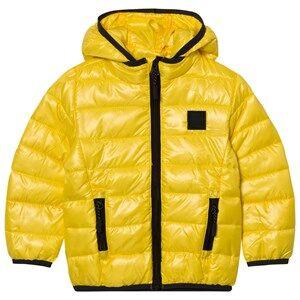Image of Molo Unisex Coats and jackets Yellow Hao Jacket Cyper Yellow