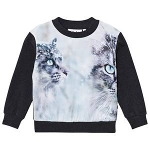 Molo Girls Tops Grey Regine Sweatshirt Snow Cats