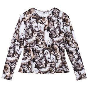 Molo Girls Tops Grey Raelicka T-Shirt Miauuu