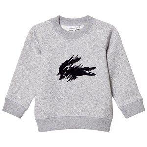 Lacoste Boys Jumpers and knitwear Grey Grey Marl Flocked Croc Sweatshirt
