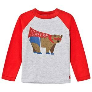 Tom Joule Boys Tops Red Red/Grey Super Bear Print Tee