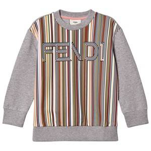 Fendi Unisex Jumpers and knitwear Grey Grey Multi Stripe Branded Sweatshirt