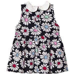 Margherita Kids Girls Dresses Multi Multi Floral Printed Daisy Collar Dress