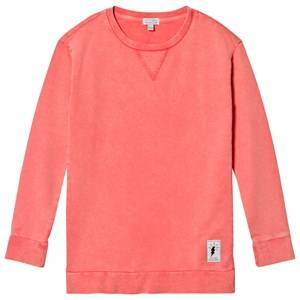 Civiliants Girls Dresses Pink Sweatshirt Dress Pink