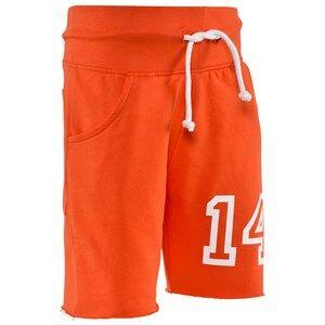 The BRAND Boys Private Label Shorts Orange Raw Jonta Shorts Orange
