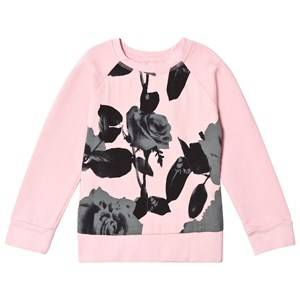 Kiss How To Kiss A Frog Girls Jumpers and knitwear Pink Liza Jumper Ash Pink/Green Rose