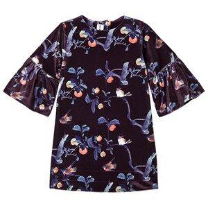 Kiss How To Kiss A Frog Girls Dresses Black Trine Dress Velvet Bloom