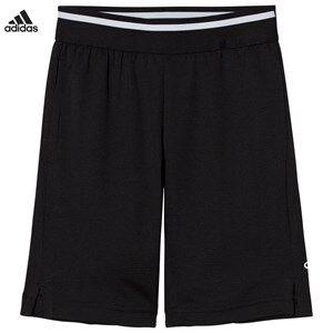 adidas Performance Boys Shorts Black Black Training Cool Shorts