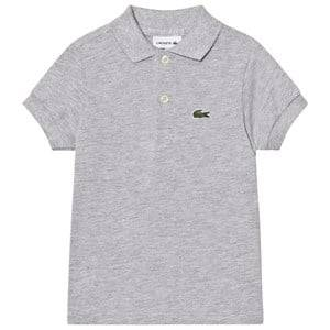 Lacoste Boys Tops Grey Grey Classic Pique Polo