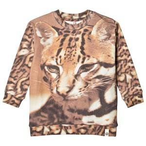 Popupshop Unisex Jumpers and knitwear Beige Cat Loose Sweatshirt