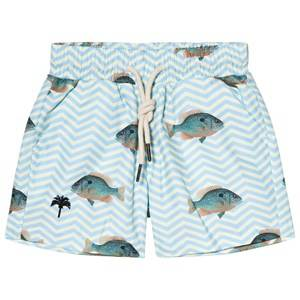 OAS Blue Fish Swim Shorts 8 Years