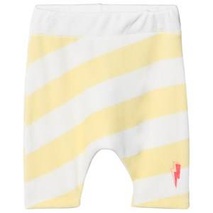 Scamp & Dude Cool Kid Shorts Yellow Sundowners 5-6 years