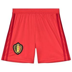Belgium National Football Team Belgium 2018 World Cup Home Replica Shorts 16 years+
