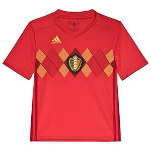Belgium National Football Team Belgium 2018 World Cup Home Replica Jersey 11-12 years (152 cm)