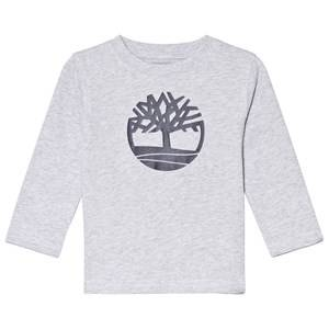 Timberland Grey Tree Logo Long Sleeve Tee 14 years