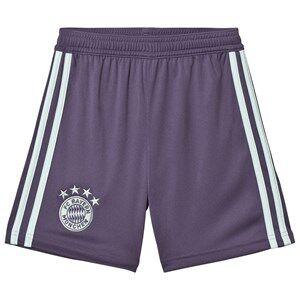 Image of Bayern Munich FC Bayern Munich 18 Away Shorts 15-16 years (176 cm)