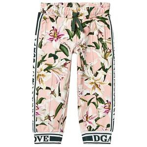 Dolce & Gabbana Lilly Sweatpants Pink 10 years