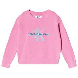 Image of Calvin Klein Jeans Logo Sweater Pink 4 years