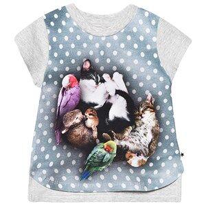 Molo Erin T-Shirt Sleepy Pets 74 cm (6-9 Months)