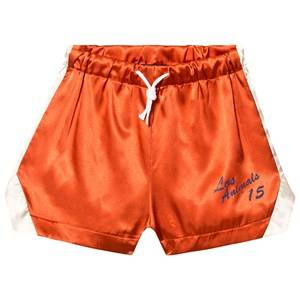 The Animals Observatory Bee Shorts Orange Los Animals 4 Years