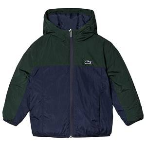 Lacoste Padded Jacket Navy & Green 14 years