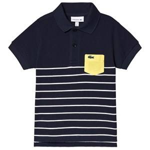 Lacoste Stripe Pique Polo Navy 8 years