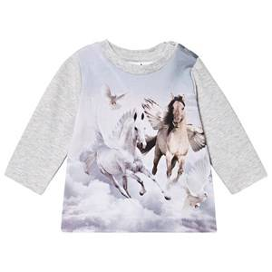 Molo Ebby T-Shirt Bewinged Baby 92 cm (1,5-2 Years)