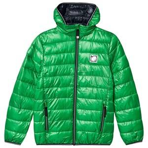 Image of Molo Hao Jacket Total Green 176 cm (16-18 years)