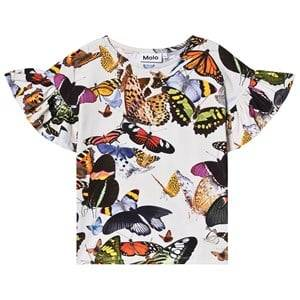 Image of Molo Rayah T-Shirt Papillon 128 cm (7-8 Years)