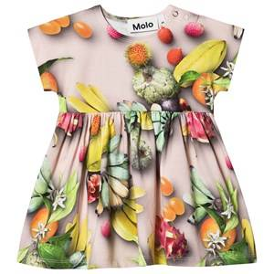 Molo Channi Dress Tutti Frutti 80 cm (9-12 Months)