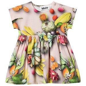 Molo Channi Dress Tutti Frutti 74 cm (6-9 Months)