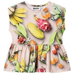 Molo Rayna T-Shirt Tutti Frutti 104 cm (3-4 Years)