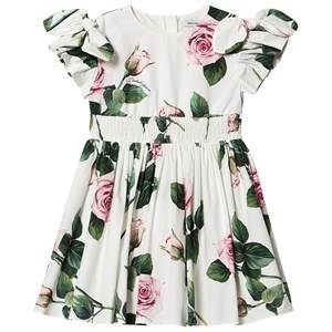 Image of Dolce & Gabbana Tropical Rose Flutter Sleeve Dress White 5 years